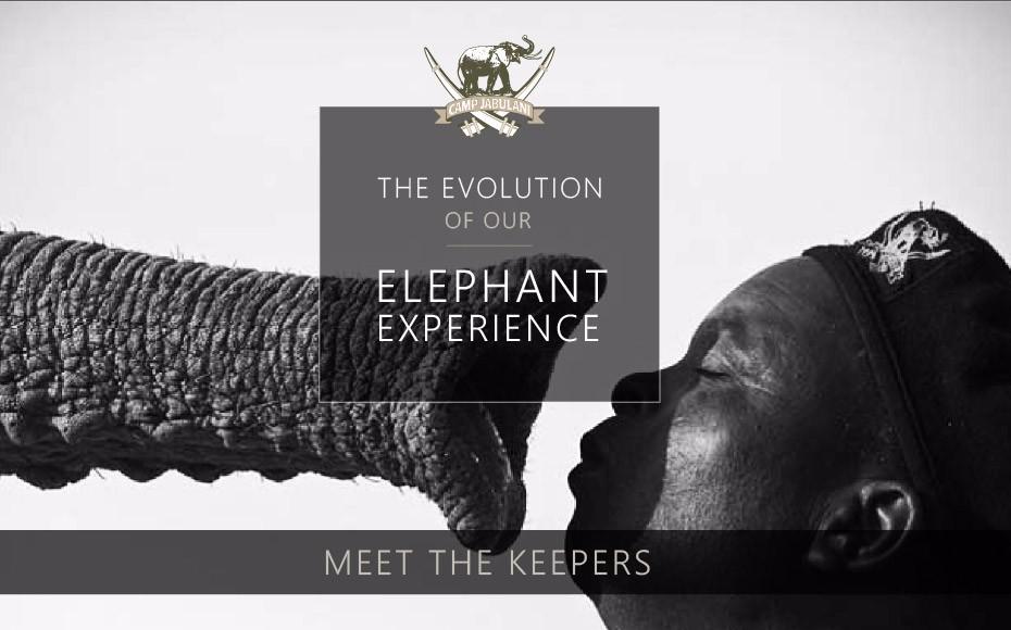 CJ-Elephant-Interaction-Blog-2