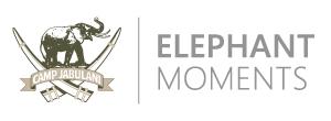 camp jabulani elephant moments