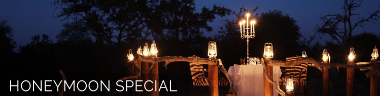 camp jabulani specials and promotions honeymoon