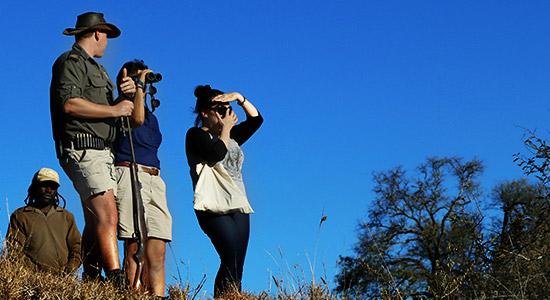 camp jabulani guided bush walks