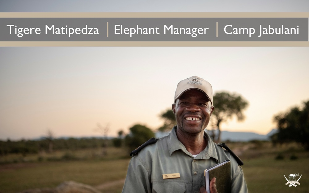 Tigere Matipedza, Elephant Manager, Camp Jabulani