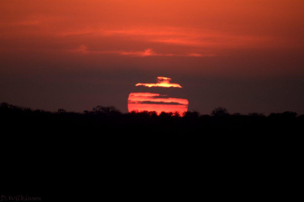 Deep red sunset at Camp Jabulani