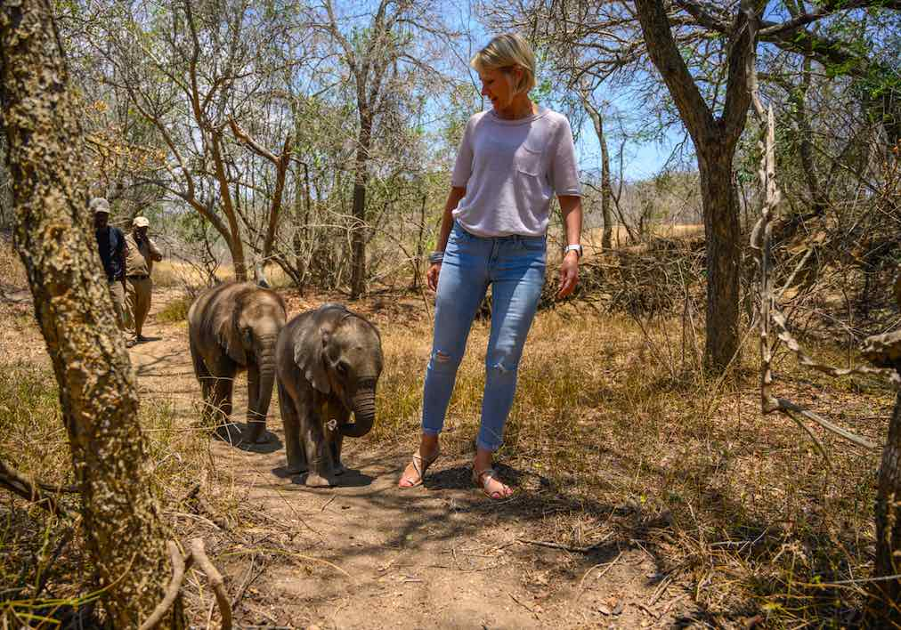Two_orphaned_Elephants_Raekie_Mopane