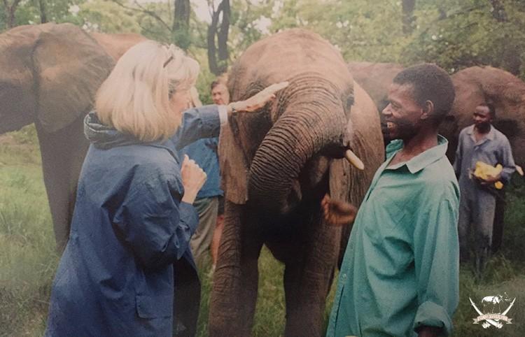 Joshua with the elephants in Zimbabwe